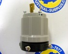 <b>Arrow Hart - </b>6212 Locking Plug